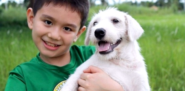 9-річний хлопчик створив притулок для бездомних собак (ФОТО)