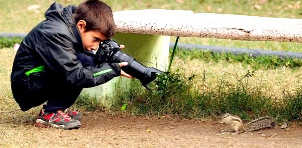 9-річний хлопчик став кращим фотографом дикої природи (ФОТО)