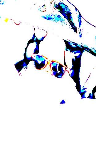 Анонс від UAUA.info на 6 червня фото