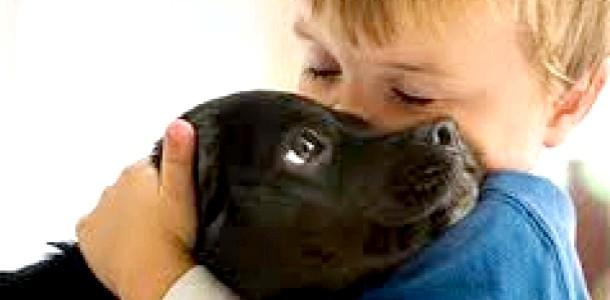 Завдяки собакам діти краще читають