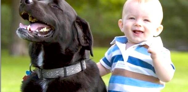 Діти і тварини: як ужитися разом? фото