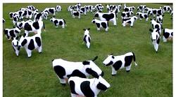 Дитячі пісні. 33 корови