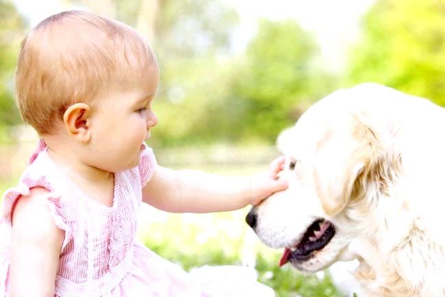 Грудне молоко може позбавити дитину від заїкання