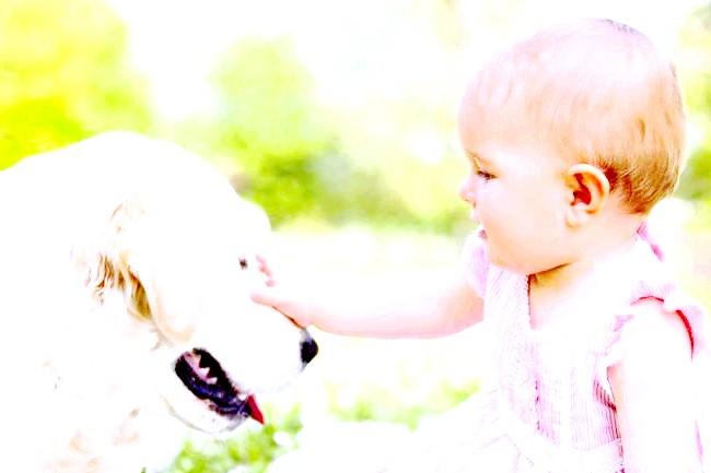 Грудне молоко допомагає недоношеним дітям швидше розвиватися фото