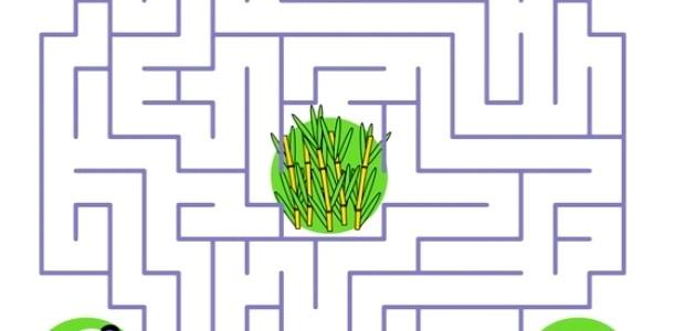 Гра «Лабіринт»: розвиваємо дитячу логіку