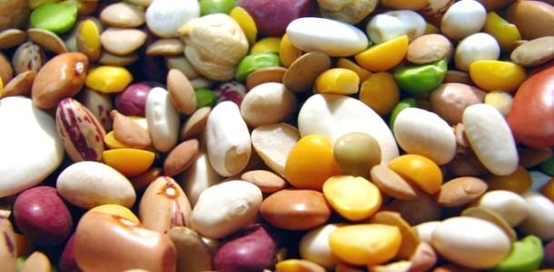 Як вибирати бобові (відео) фото