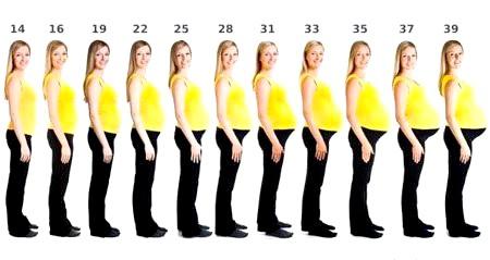 Коли стає видно живіт при вагітності?
