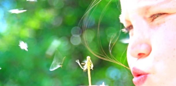 Лікуємо алергію (відео)