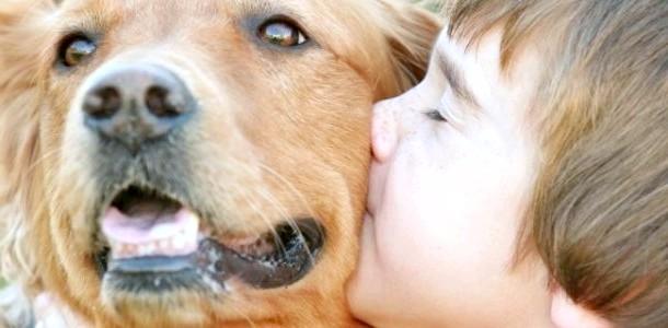 Малюк і собака: 6 порад батькам фото