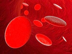 Низький гемоглобін при вагітності фото
