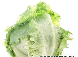 Пекінська капуста. Вітаміни і користь