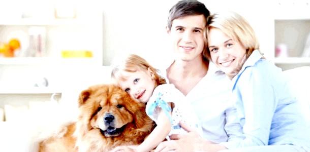 У Києві сьогодні відзначають День сім'ї