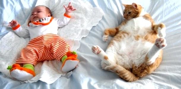 ВІДЕОпозітів: коли кіт по-справжньому любить дитину фото