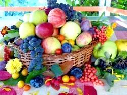 Вітаміни в боротьбі з безпліддям