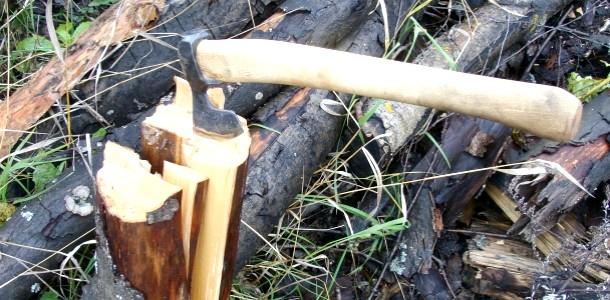 Вибираємо дрова на пікнік (відео)