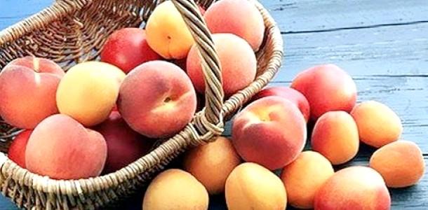 Вибираємо персики, абрикоси, нектарини (відео)