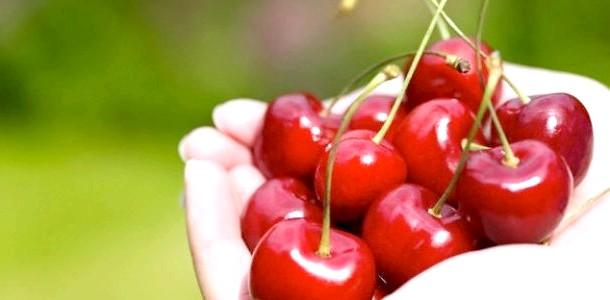Вибираємо корисну і солодку черешню (відео)