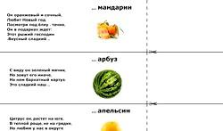 Загадки про фрукти. Яблуко фото