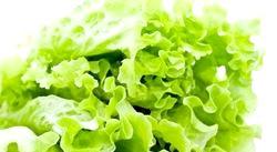 Зелений салат на зиму