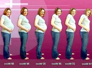 Живіт при вагітності