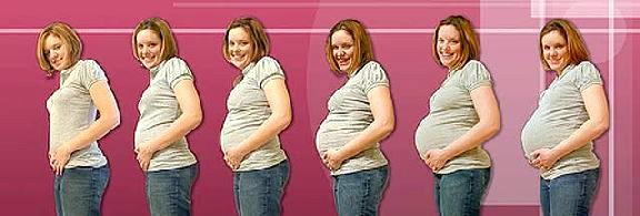 Живіт росте при вагітності