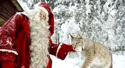 Зимовий відпочинок з дітьми у Фінляндії