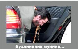 Кращі прикмети для водіїв