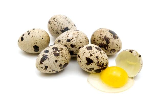 Перепелині яйця: користь і шкода фото