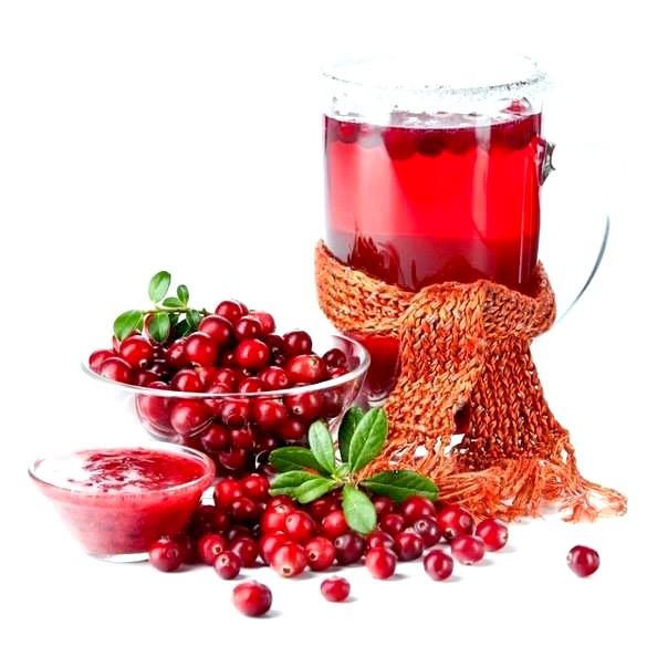 Користь і шкода журавлинного соку
