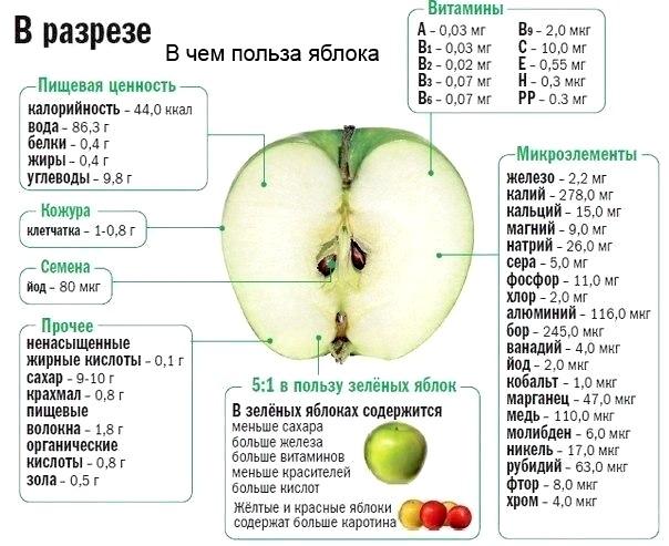 яблуко в розрізі - користь чи шкода