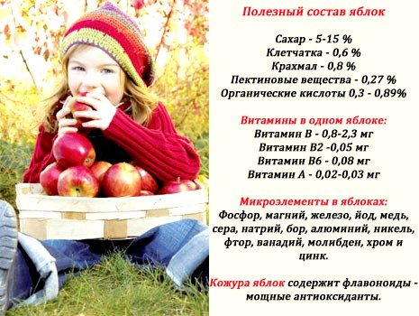 склад яблук