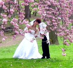 Весілля навесні: Кілька порад фото
