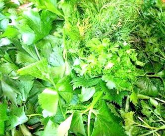 Свіжа зелень для вагітних фото