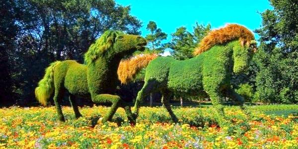 Дивовижний ботанічний сад в Монреалі (ФОТО)
