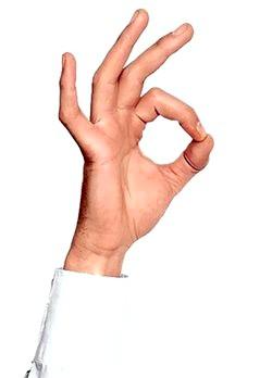 Загадки про частини тіла. Пальці рук