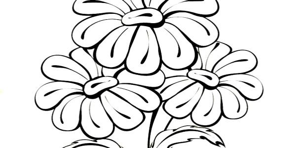 Розмальовки для малюків: літні квіти фото