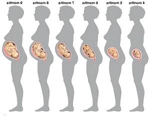 Розмір живота при вагітності