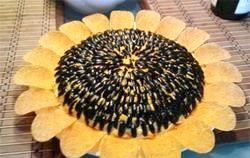 Салат соняшник з грибами. Кращі рецепти