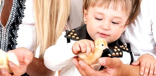 Сальмонельоз: як убезпечити малюка