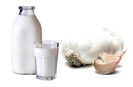 Часник з молоком від глистів: рецепти, відгуки