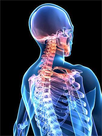 Що робити, якщо болить шия ззаду? фото