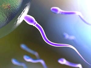 Що таке спермограма? фото