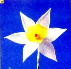 Квіти з гофровані паперу. Нарциси. Майстер клас з покроковий фото фото