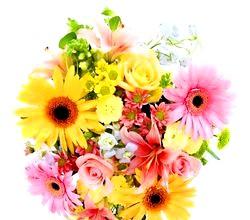 Квіти зі стрічок. Жимолость и молюцелли. Майстер клас