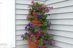 Що можна сделать з квітів: цікаві Варіанти