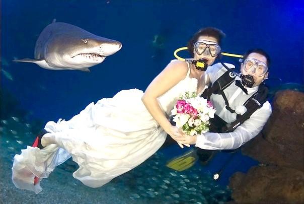 Екстремальне весілля фото